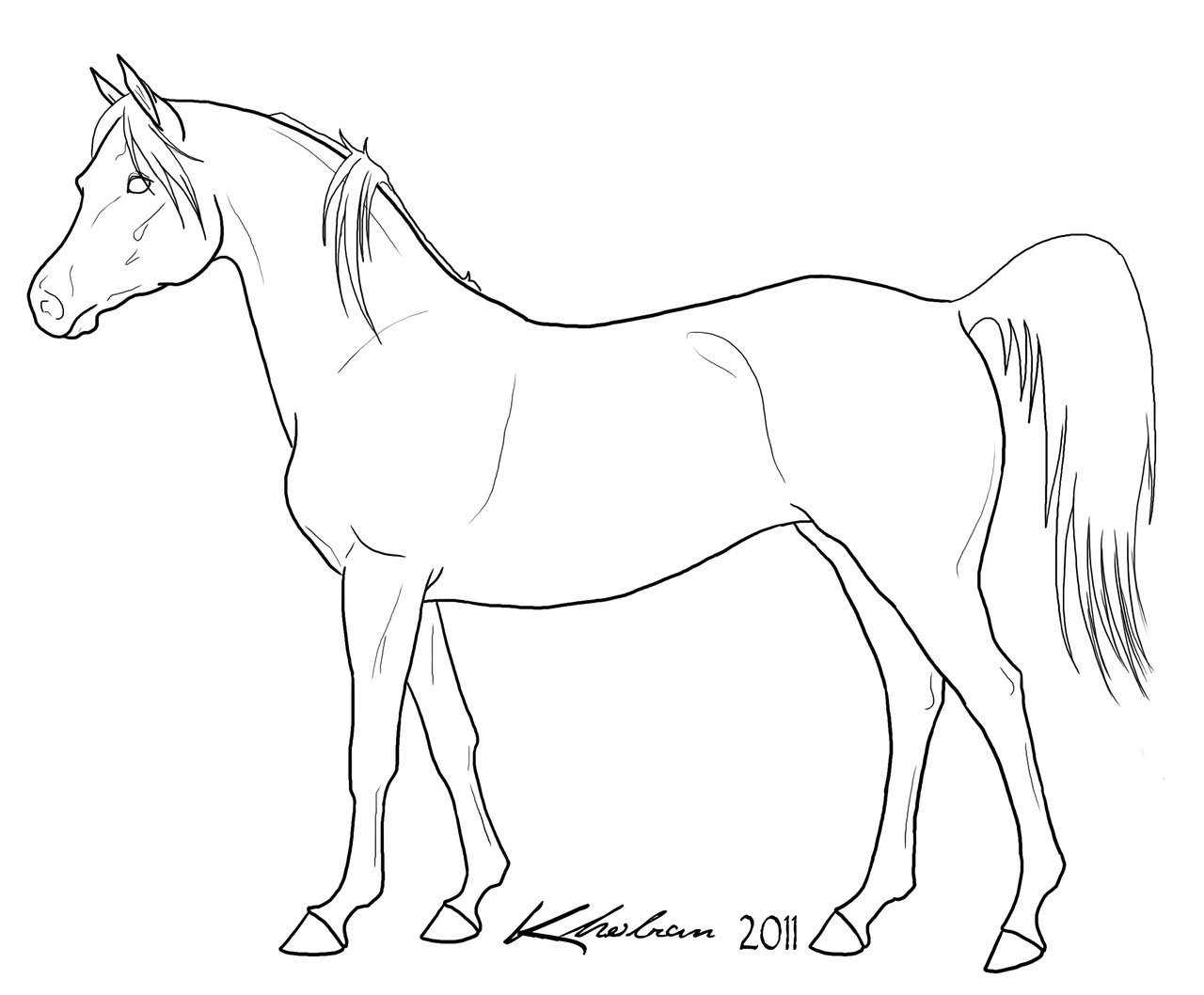 1280x1058 Download Arabian Horse Coloring Pages Brilliant