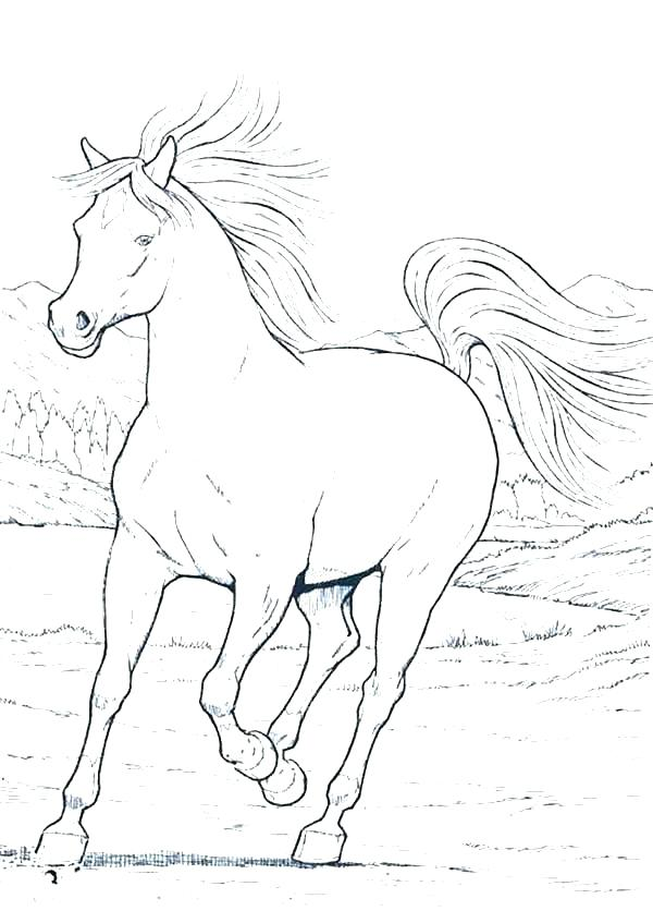 600x847 Realistic Horse Coloring Pages Horse Coloring Page Realistic Horse