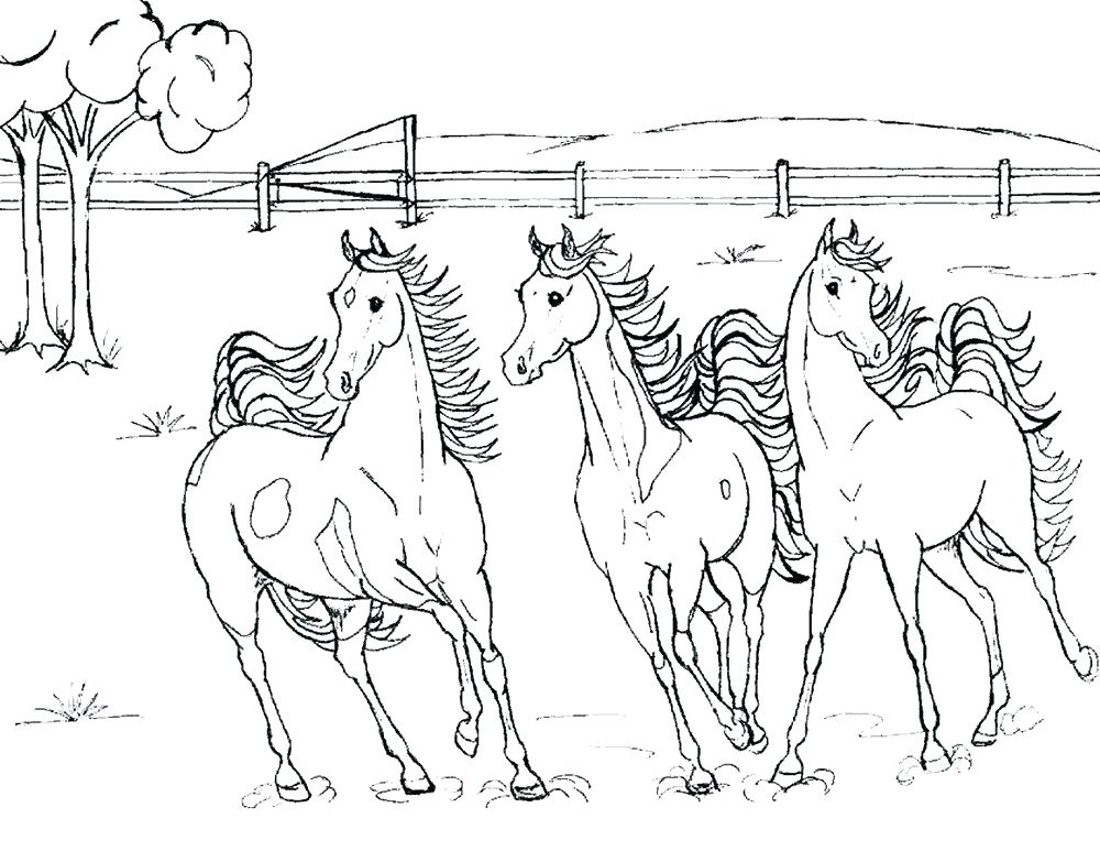 1000x783 Realistic Horse Coloring Pages Horse Jumping Coloring Pages