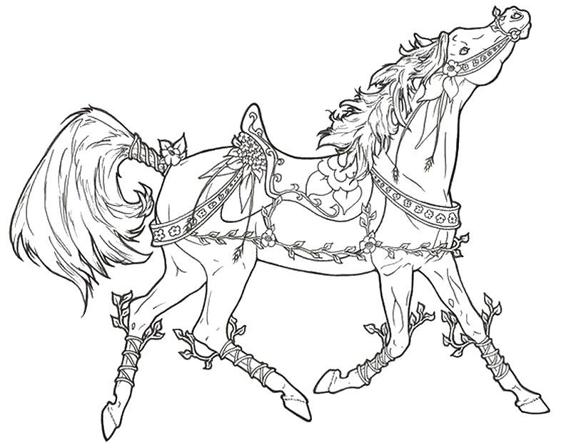 800x620 Running Arabian Horse Coloring Page Horse Coloring Pages