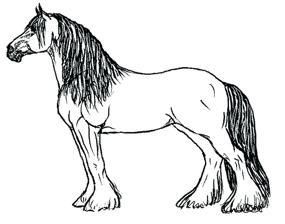 1000x786 Horse Coloring Pages Easy