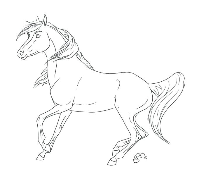 675x605 Arabian Horse Coloring Pages Innovation Idea Horse Coloring Pages