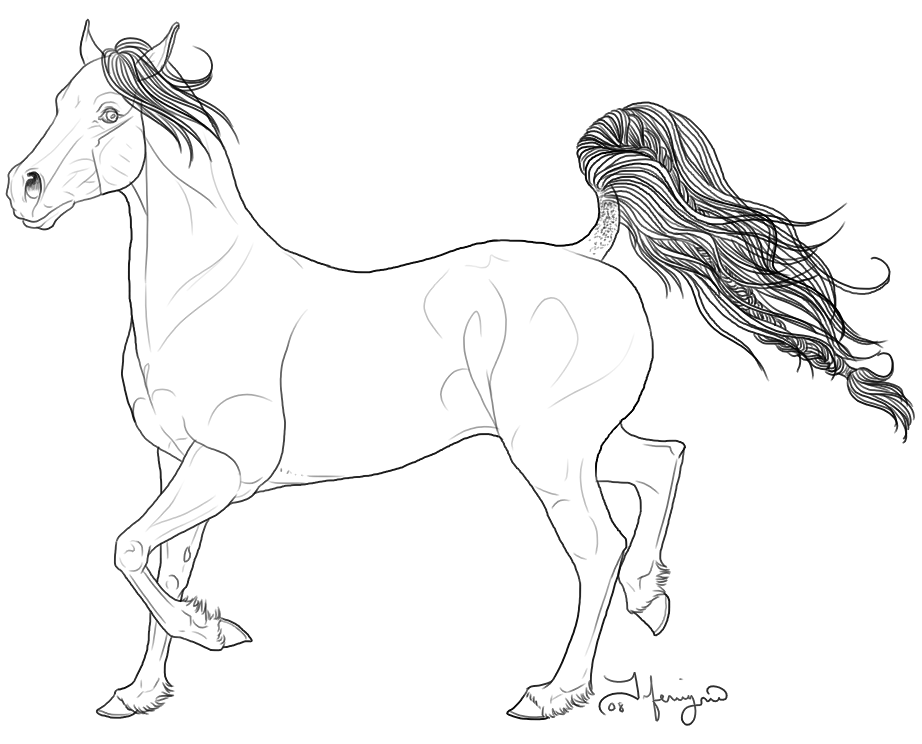 922x744 Arabian Horse Coloring Pages Arabian Horse