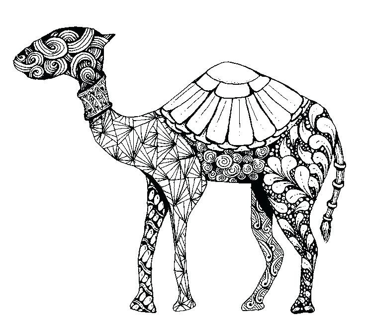 736x664 Arabic Coloring Pages More Coloring Pages World Ic Woman