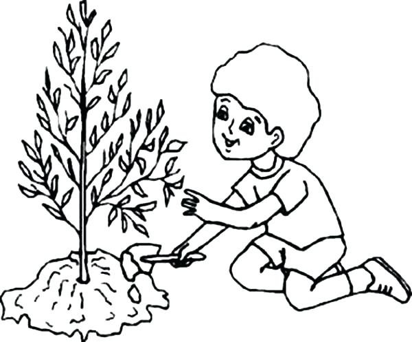 600x497 Caring Coloring Pages Arbor Day Kids Caring Tree On Arbor Day