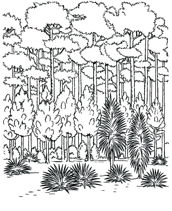 600x734 Snowy Day Coloring Page And Friends In A Snowy Day Coloring Page