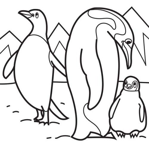 500x500 Arctic Animals Coloring Pages