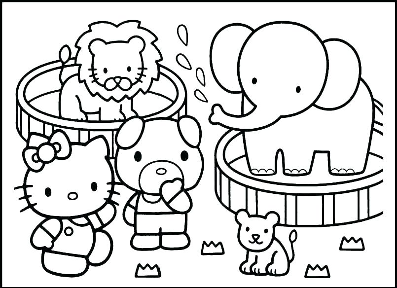 805x584 Coloring Pages Zoo Animals Arctic Animal Coloring Pages Polar