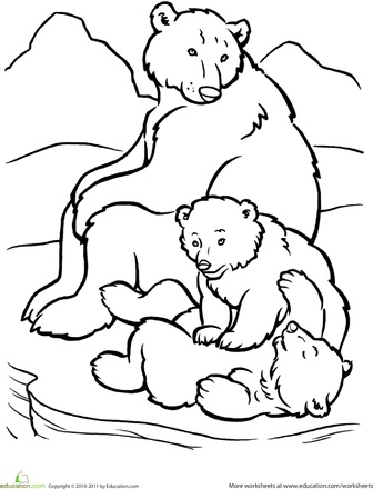 Arctic Animals Coloring Pages For Preschoolers