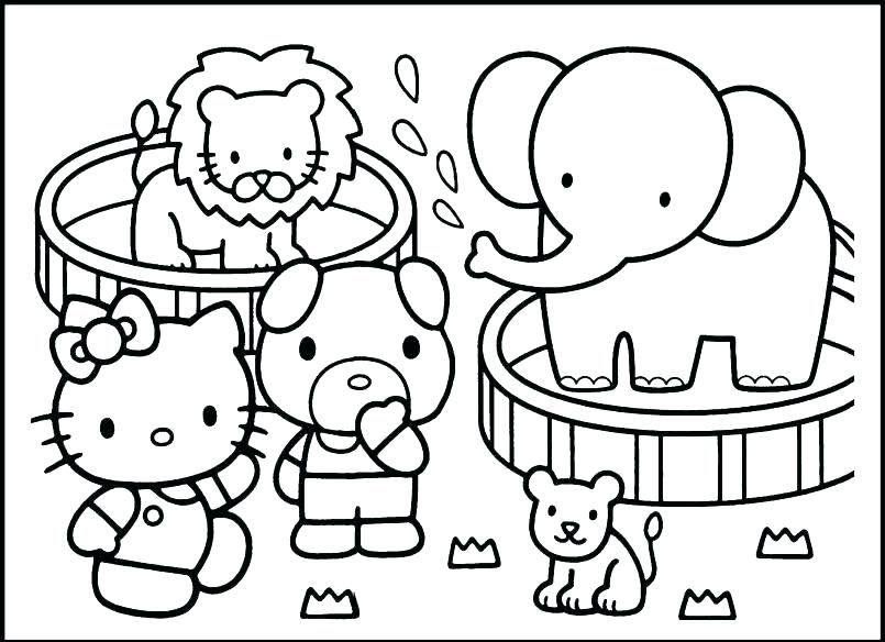 805x584 Arctic Animal Coloring Pages