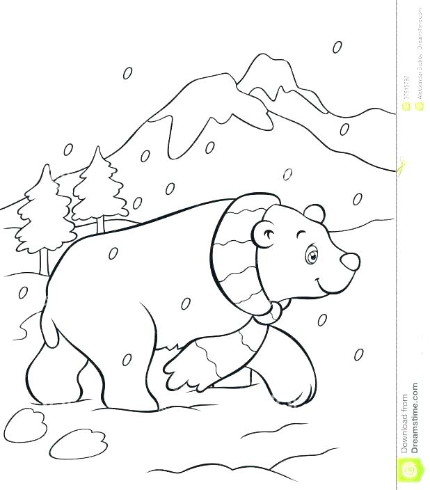 618x704 Arctic Animals Coloring Pages For Preschoolers Polar Bears Free