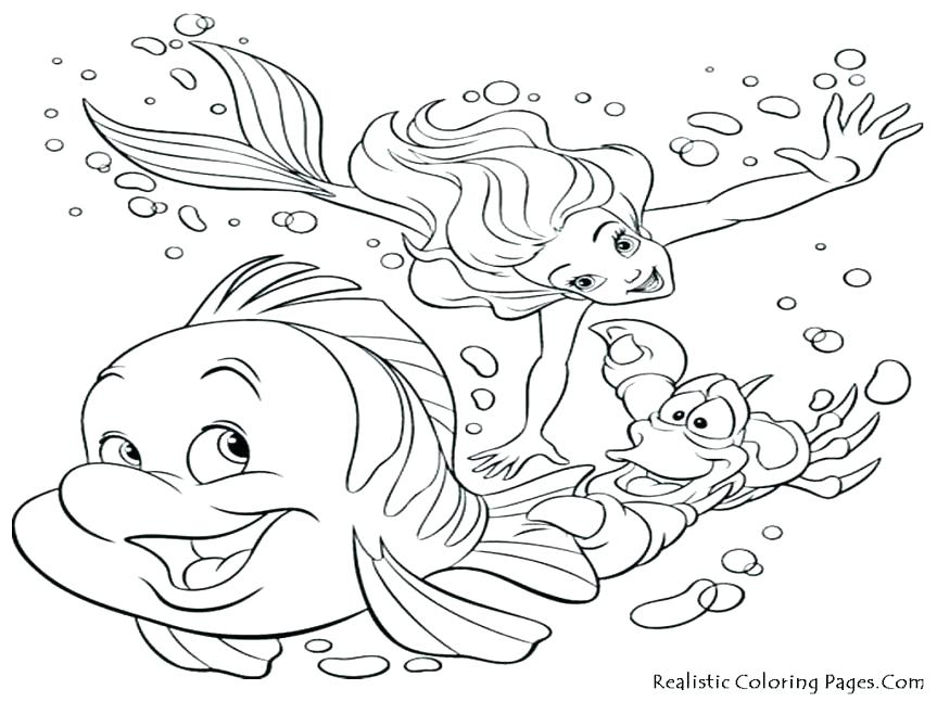 863x647 Animal Habitat Coloring Pages Arctic Animal Coloring Pages Free