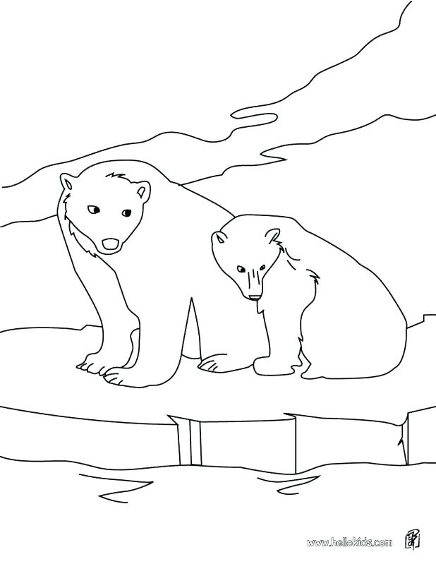 618x799 Arctic Animal Coloring Pages Coloring Pages Of Polar Bears Adult