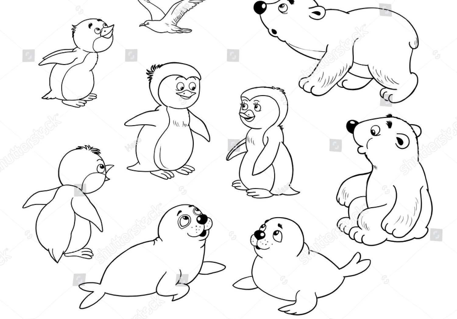 1500x1050 Arctic Animals Colouring Pages Coloring General Free Page