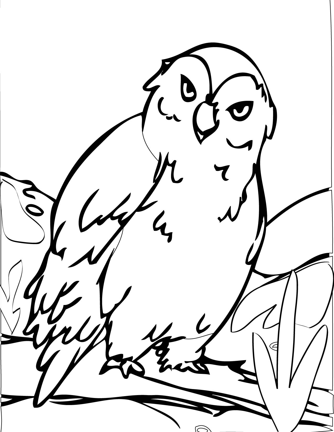 1275x1650 Arctic Owl Coloring Page