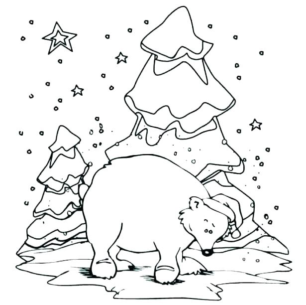 615x612 Arctic Animals Coloring Pages Together With Free Arctic Animal