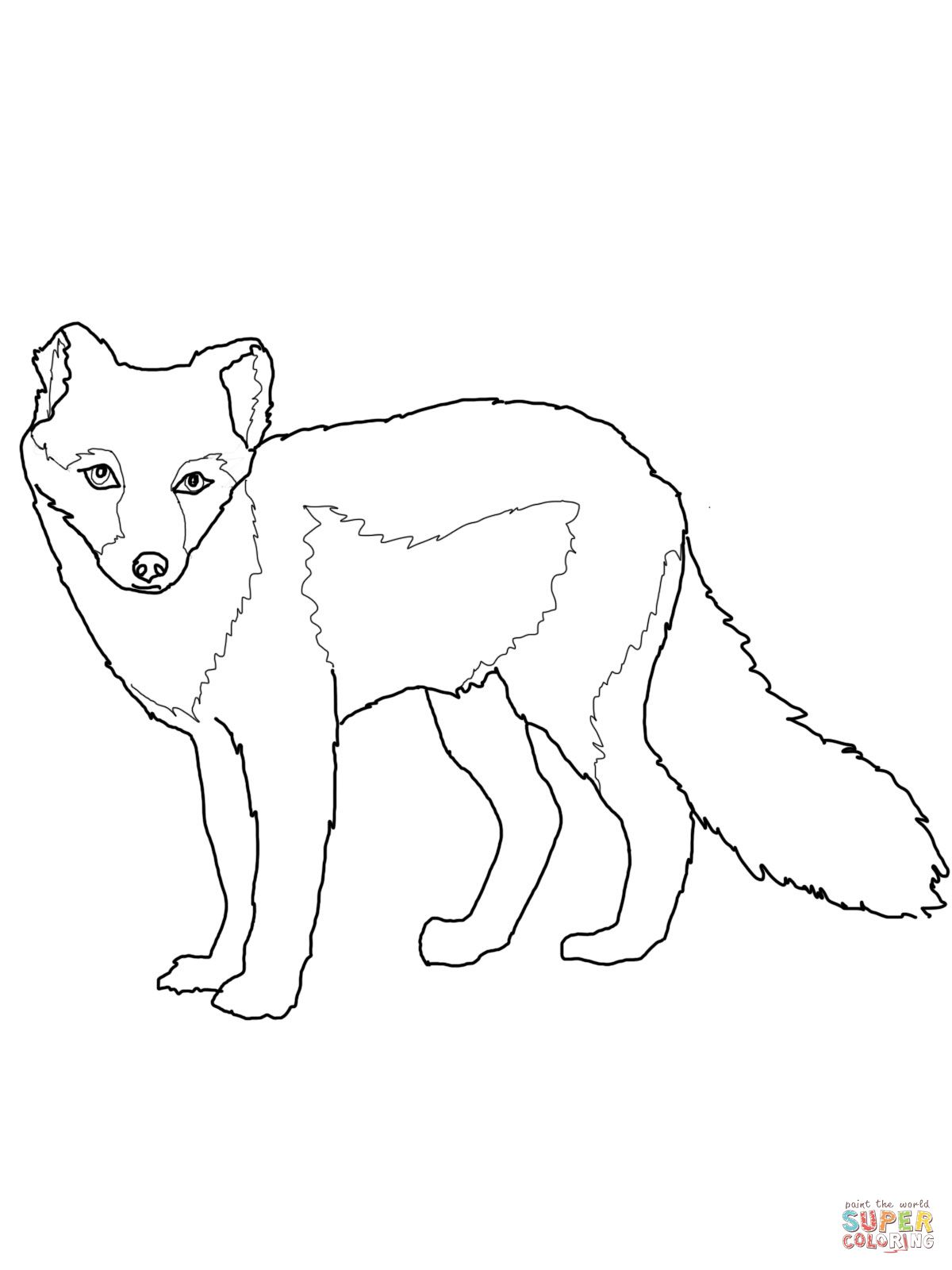 1200x1600 Arctic Fox Summer Coat Coloring Page Stiches
