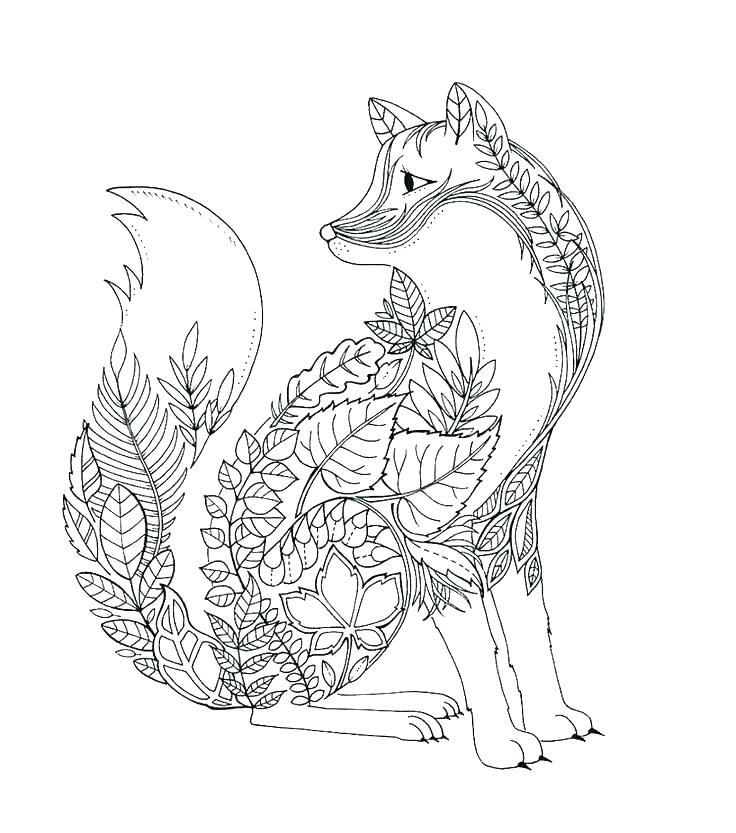 736x833 Arctic Fox Coloring Page Arctic Coloring Pages Arctic Coloring