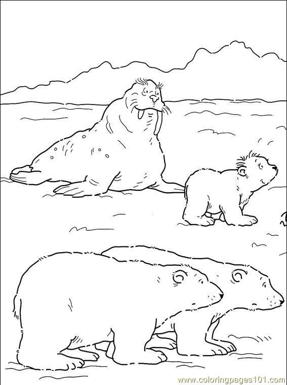 567x759 Artic Coloring Pages To Print Grade