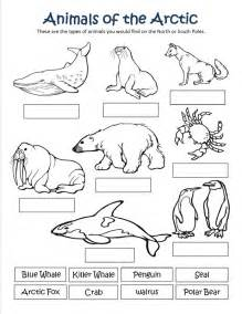 219x284 Polar Animals Coloring Pages