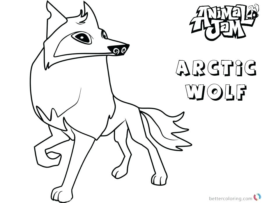 900x700 Arctic Coloring Pages Arctic Habitat Coloring Pages Arctic