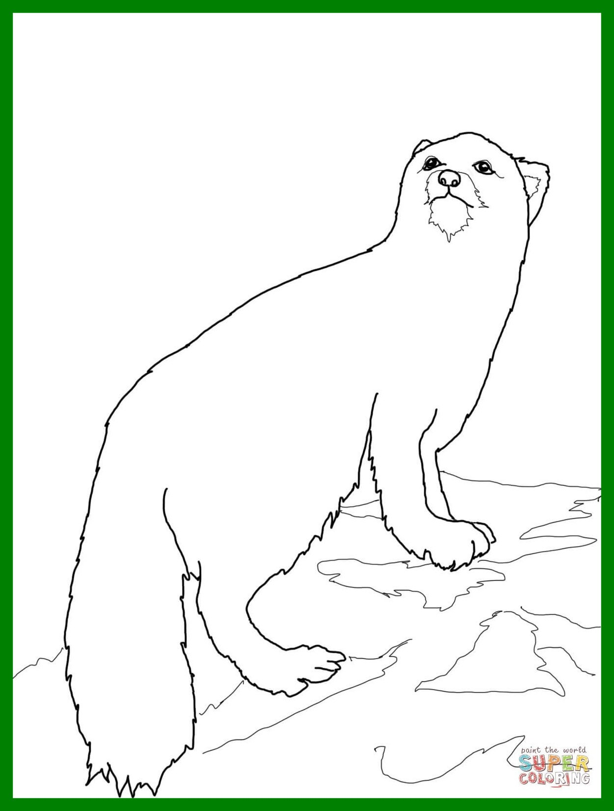 1252x1652 Marvelous Arctic Coloring Sheets To Print Books Pict For Animal