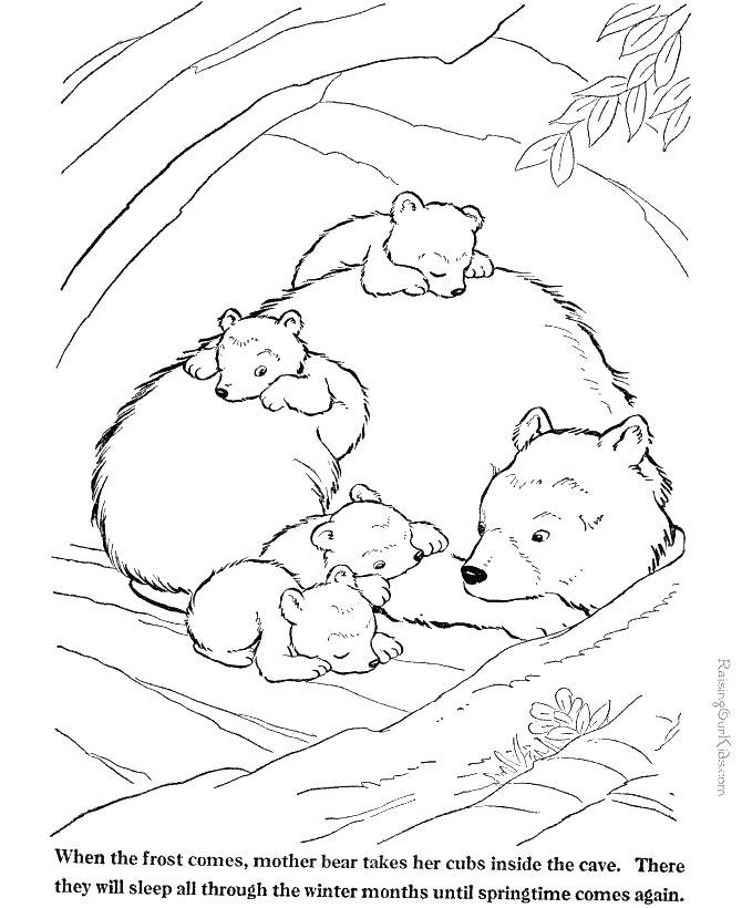 670x820 Wild Animals Coloring Pages Printable Printable Zoo Animal