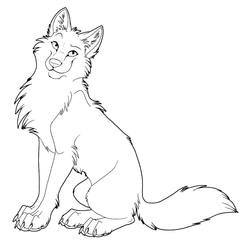 800x799 Wolf Coloring Pages Wolf Coloring Page Realistic Pages To Print
