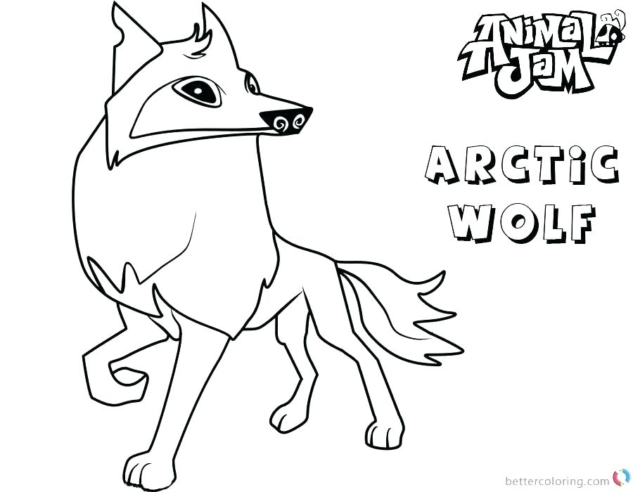 900x700 Animal Jam Coloring Pages Arctic Coloring Pages Animal Jam