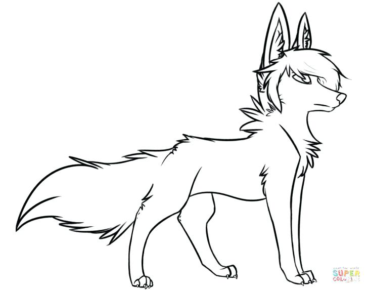 728x573 Animal Jam Coloring Pages Arctic Wolf Animal Jam Coloring Pages