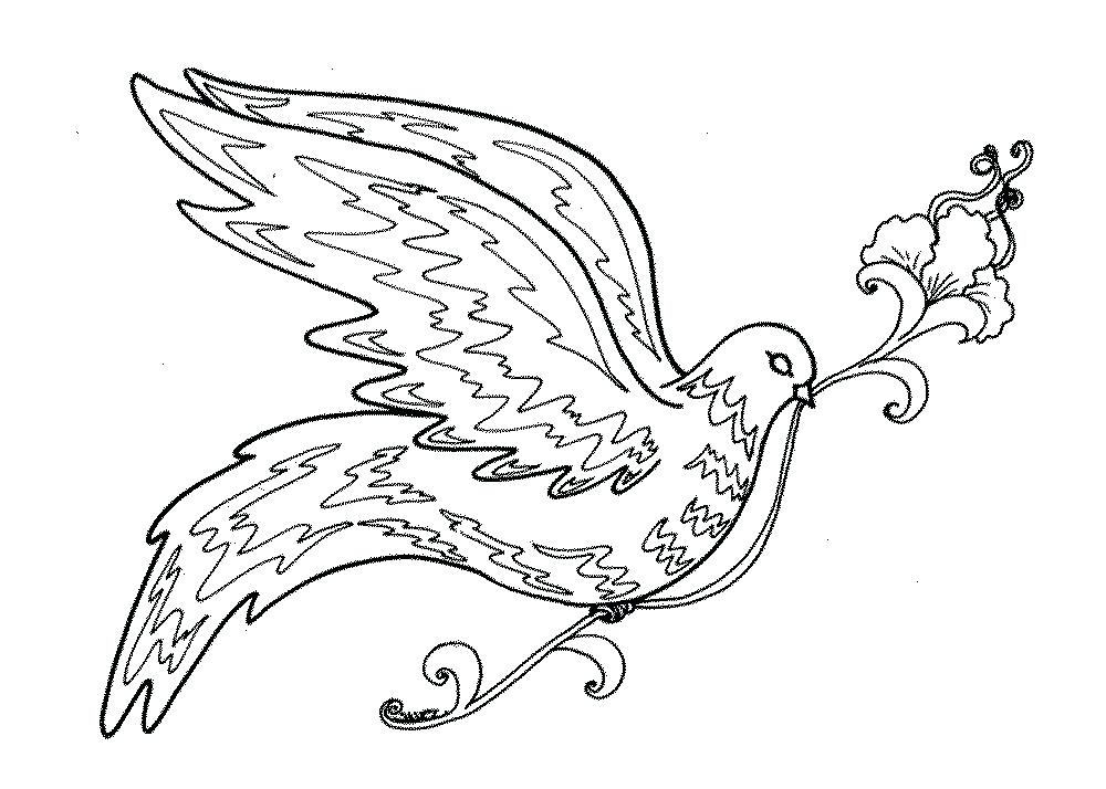 1000x714 Cardinal Coloring Pages Coloring Bird Coloring Pages For Adults
