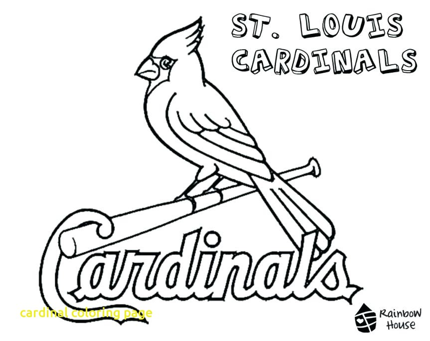 863x685 Coloring For Kids Arizona Cardinals Page Christmas Cardinal Pages