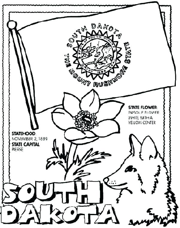 601x762 Arkansas Coloring Pages State Flower Coloring Page State Coloring