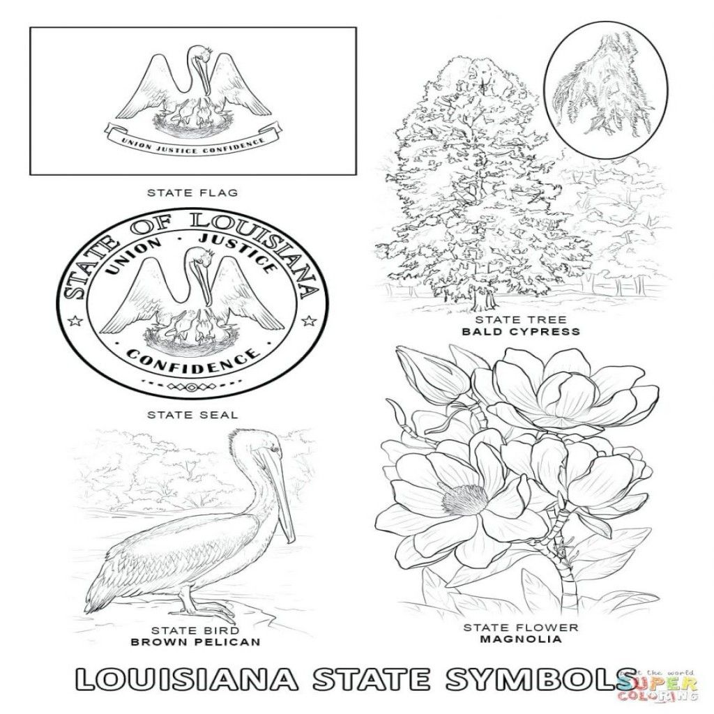 1024x1024 Appealing Arkansas State Symbols Coloring Pages Bird And Flower