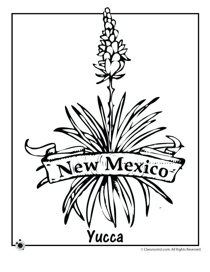 680x880 Arkansas Coloring Pages Coloring Pages Symbols Coloring Pages