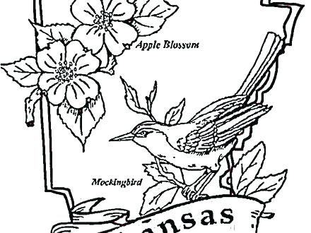 440x330 Arkansas Coloring Pages Map Coloring Page Arkansas Razorback