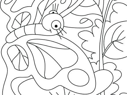 440x330 Butterfly And Rose Coloring Pages Colour A Google Art Class Page