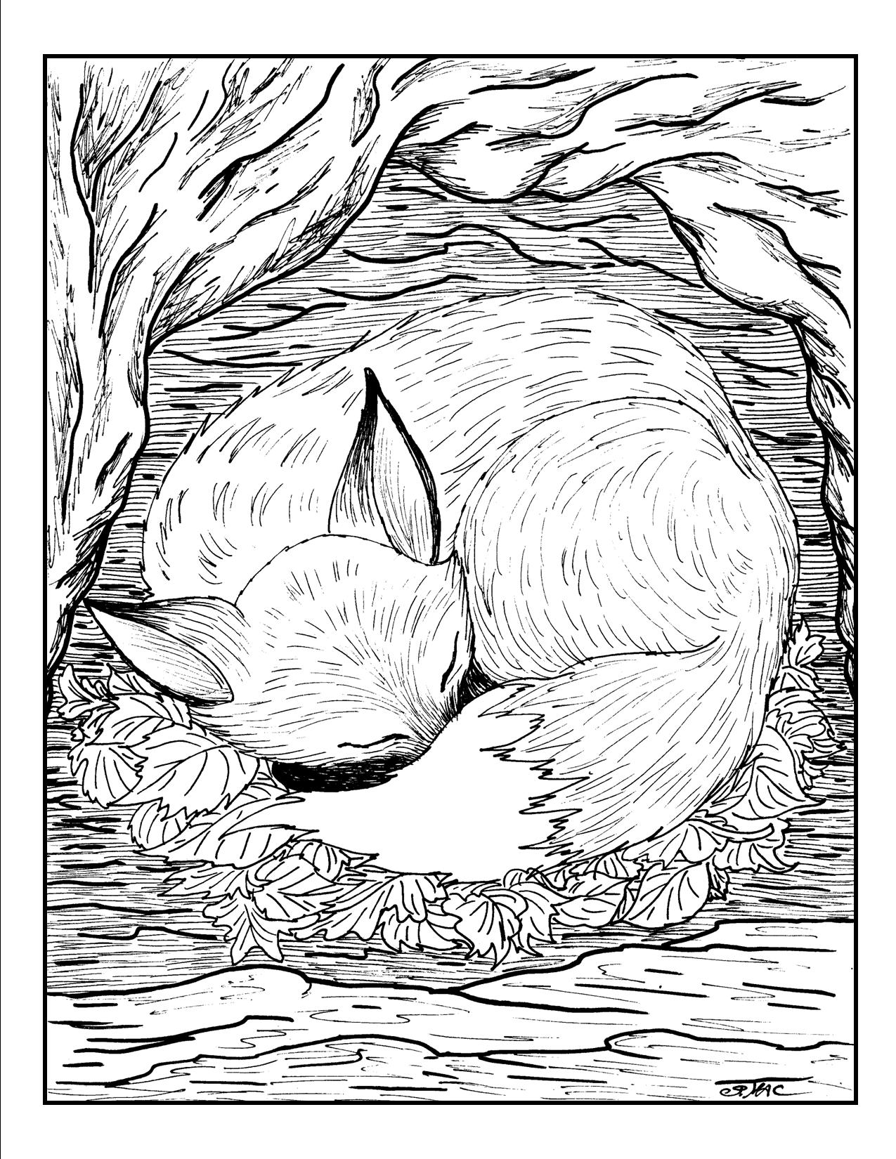 1275x1650 Free Adult Coloring Pages S Mac's Place To Be