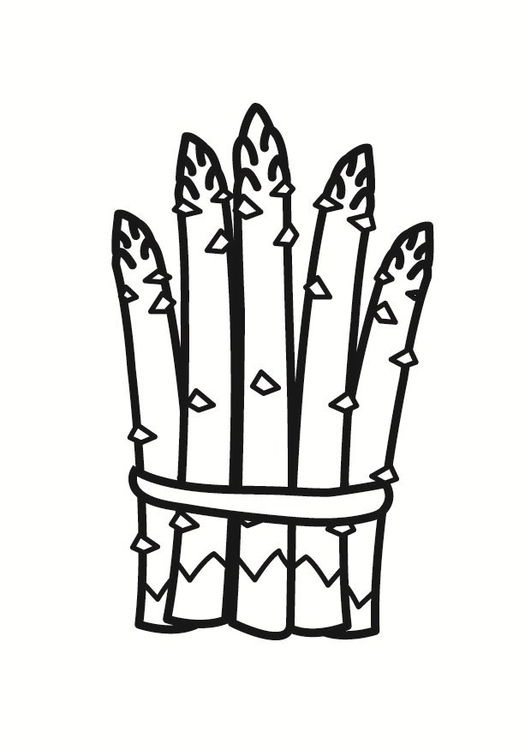 531x750 Coloring Page Asparagus