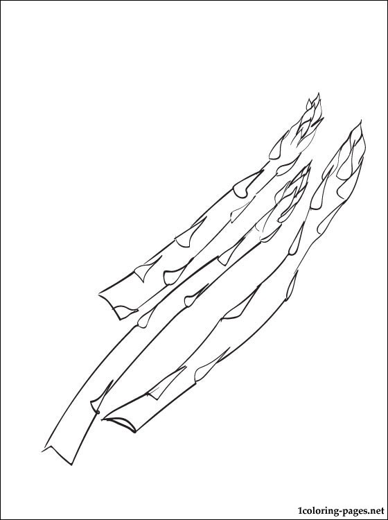 560x750 Asparagus Coloring Page Coloring Pages
