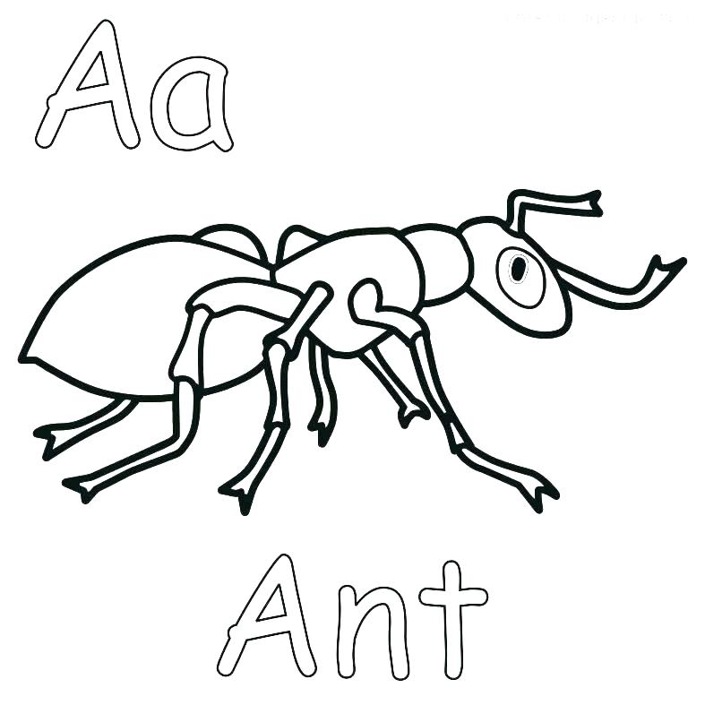 787x787 Coloring Man Coloring Page Ant Pages Sheet Printable Atom Farm