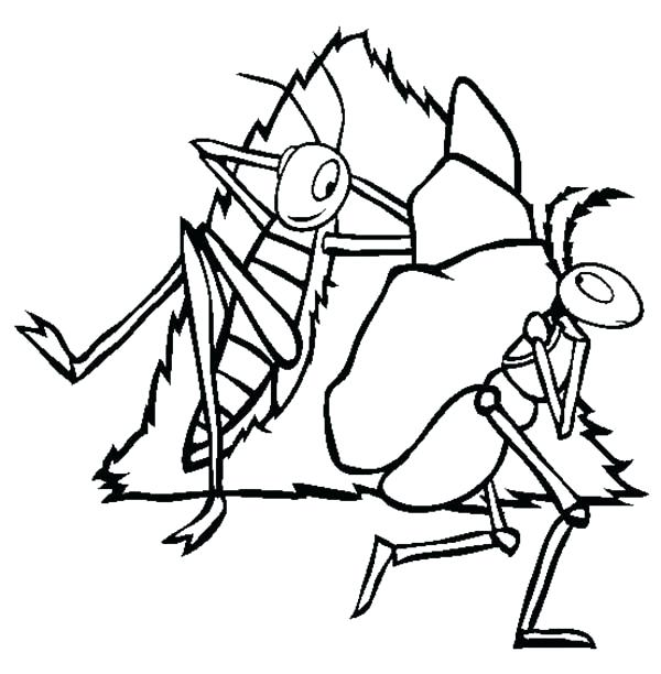 600x612 Ant Coloring Pages Ant Coloring Page Atom Ant Coloring Pages