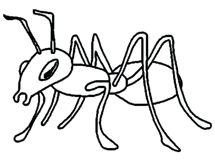 728x546 Ant Coloring Pages Fearsome Atom Man Avengers Free Farm Printable