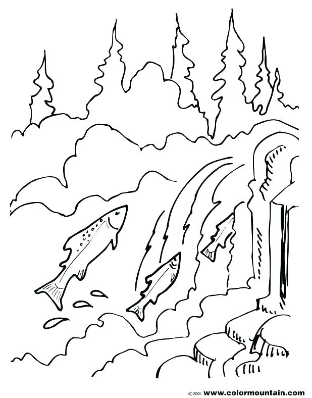 618x788 Full Coloring Pages Good Salmon Coloring Pages Crayola Photo