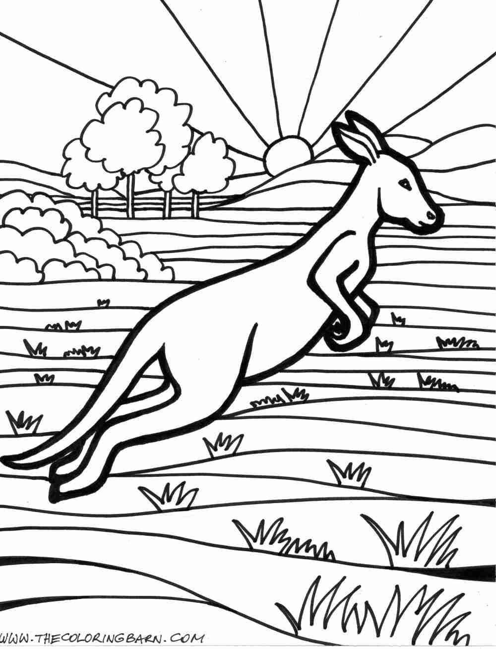 1000x1308 Australia Coloring Page Olegratiy