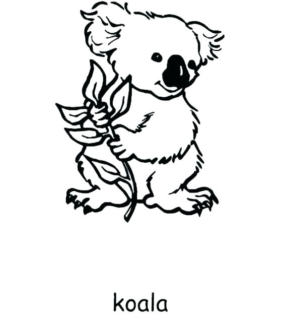 562x649 Australia Coloring Pages Coloring Pages Coloring Pages Day