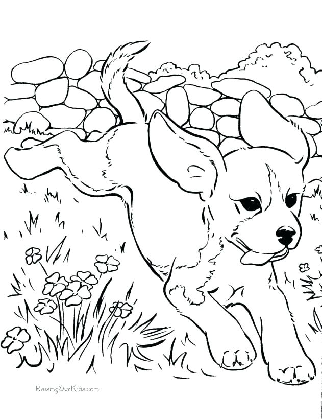 631x820 Dog Coloring Pages To Print