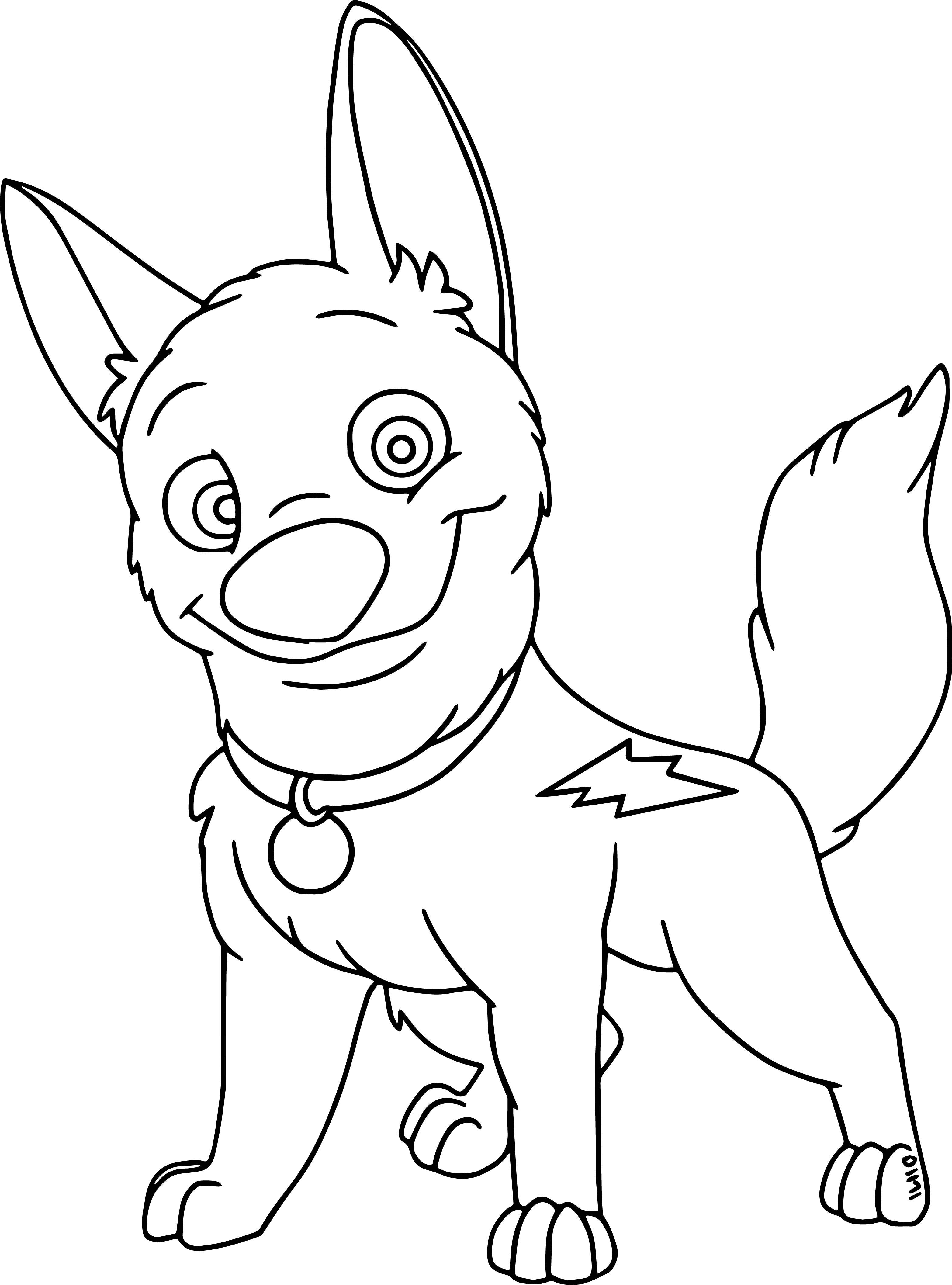 3131x4226 Fascinating Australian Cattle Dog Coloring Page Printable