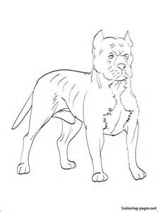 224x300 Australian Cattle Dog Coloring Online, Blue Dog Coloring Page