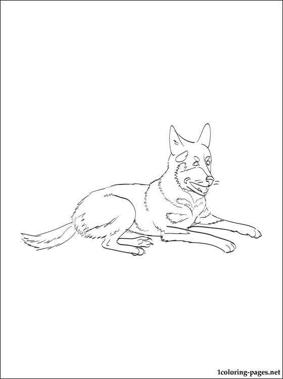 560x750 Australian Cattle Dog Coloring Page Coloring Pages